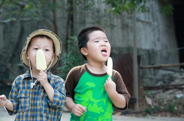 7 món kem đi cùng năm tháng mà chắc chắn tuổi thơ ai cũng từng trải qua - Ảnh 2.