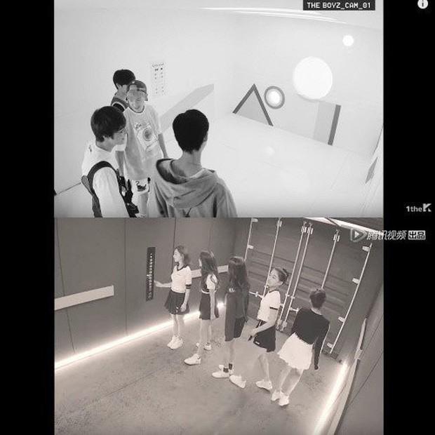 Vừa tung clip nhá hàng, Produce 101 Trung Quốc liền bị tố đạo nhái nhóm nhạc Hàn Quốc - Ảnh 3.