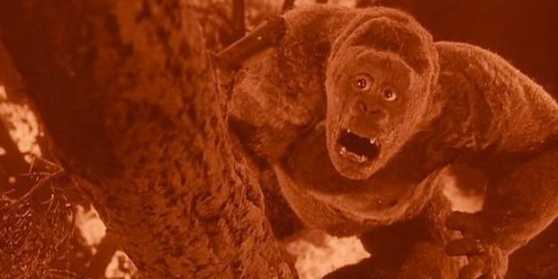 5 chàng Kong trong lịch sử Hollywood, không tên khỉ khổng lồ nào lầy bằng George của Rampage - Ảnh 3.