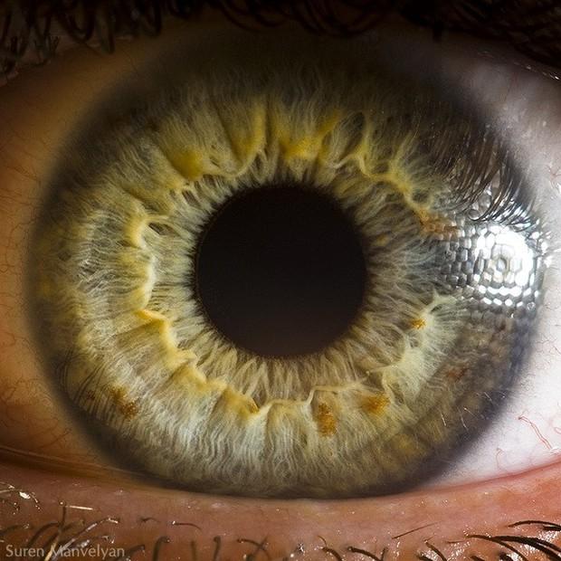 """Tiết lộ 5 sự thật về tính cách và sức khỏe qua màu mắt mà khoa học nói """"chắc như đinh đóng cột"""" - Ảnh 5."""