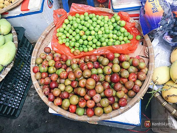 Mận Hà Nội đầu mùa giòn rôm rốp, dù chua vẫn khiến bao người Sài Gòn phải thòm thèm nhớ nhung - Ảnh 2.