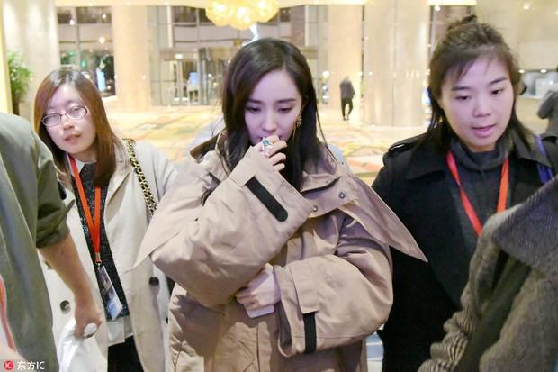 Sự thật về loạt ảnh khoa trương, đeo trang sức đắt tiền của Dương Mịch khi lần đầu xuất hiện sau scandal quỵt tiền - Ảnh 7.