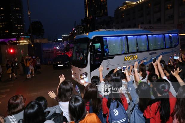 Fan bị tụt đường huyết, òa khóc khi gặp hoàng tử lai Samuel trên phố đi bộ Nguyễn Huệ - Ảnh 6.
