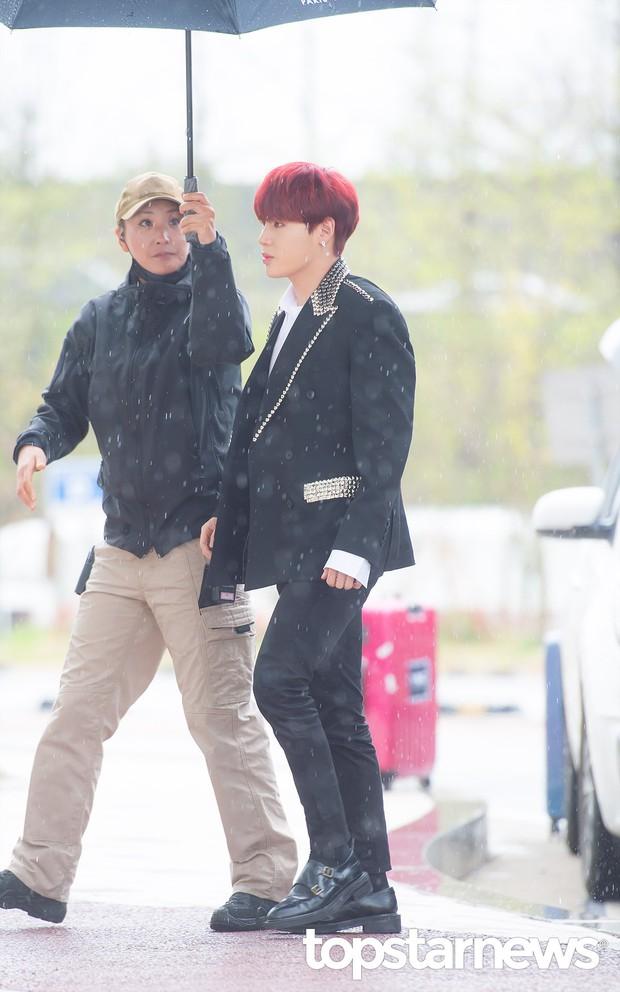 Cực phẩm dưới mưa: Jung Chae Yeon đẹp lộng lẫy cùng I.O.I, dàn hoàng tử Wanna One đến ủng hộ Produce 48 - Ảnh 11.