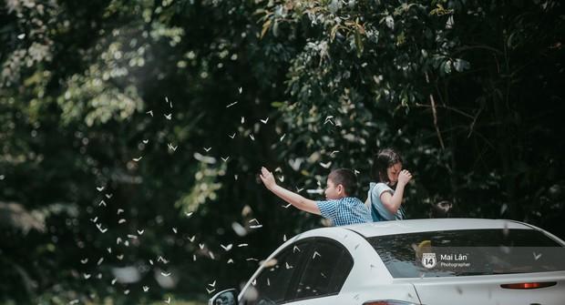 Rừng Cúc Phương vào mùa bướm: Đẹp như một giấc mơ - Ảnh 3.