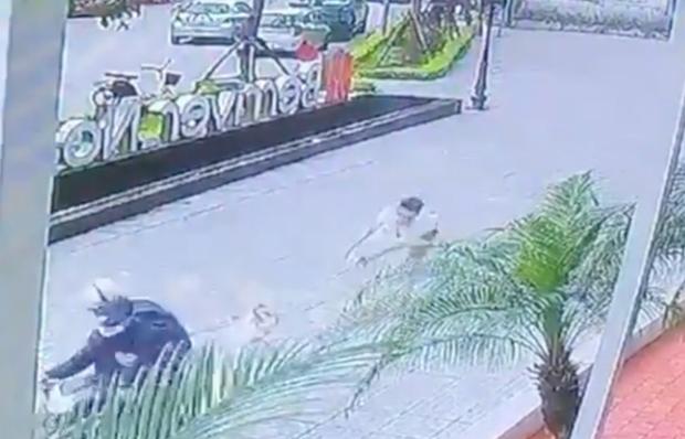 Hà Nội: Kẻ gian cướp chó ngay trước sảnh chung cư, chủ bị kéo lê hàng chục mét - Ảnh 2.