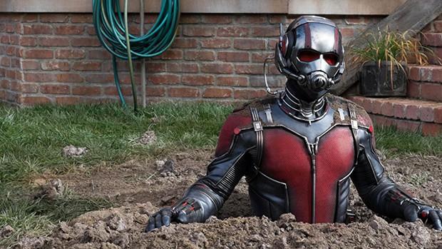 """Cuối cùng Ant-Man cũng đã tiết lộ lý do """"chuối củ"""" vì sao nhân vật này chưa """"thể hiện"""" trong """"Avengers: Infinity War"""" - Ảnh 1."""