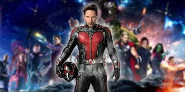 """Cuối cùng Ant-Man cũng đã tiết lộ lý do """"chuối củ"""" vì sao nhân vật này chưa """"thể hiện"""" trong """"Avengers: Infinity War"""" - Ảnh 4."""