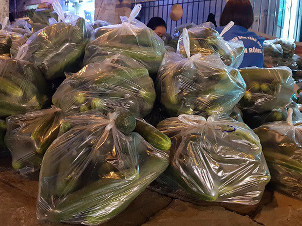 Sinh viên trắng đêm giải cứu dưa chuột giúp nông dân Nghệ An - Ảnh 4.
