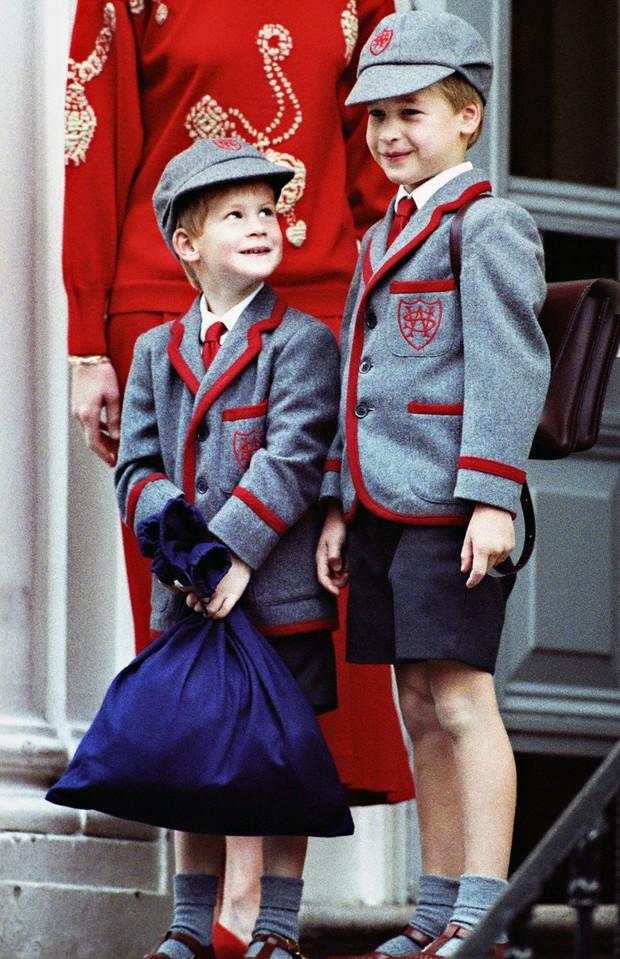 Những bức ảnh gắn liền với thời thơ ấu của bộ đôi Hoàng tử William và Harry - Ảnh 6.