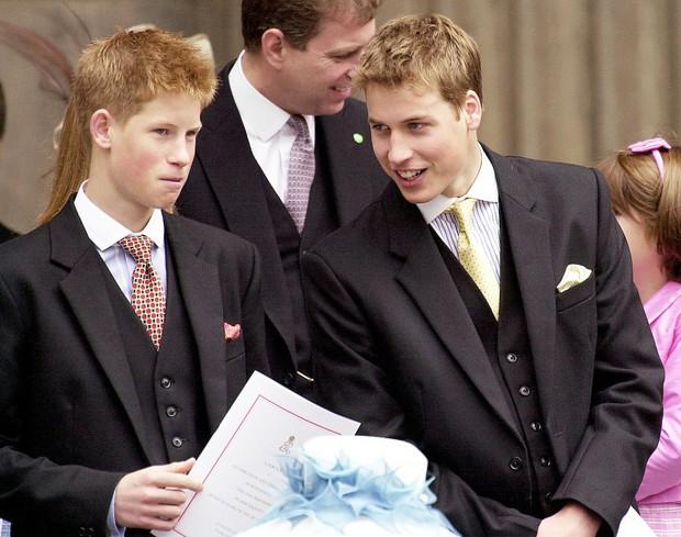 Những bức ảnh gắn liền với thời thơ ấu của bộ đôi Hoàng tử William và Harry - Ảnh 9.