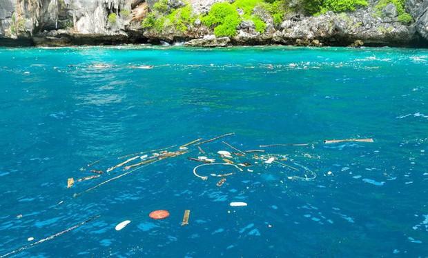 """Bãi biển nổi tiếng Thái Lan phải đóng cửa 4 tháng vì lý do """"nói mãi không sửa"""" của du khách - Ảnh 4."""