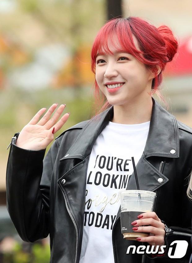 Tiên cảnh hoa anh đào tại Hàn: Mỹ nhân Hani chiếm hết spotlight, Wanna One xuất hiện cùng quân đoàn mỹ nam - Ảnh 4.