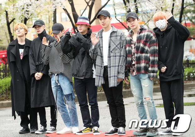 Tiên cảnh hoa anh đào tại Hàn: Mỹ nhân Hani chiếm hết spotlight, Wanna One xuất hiện cùng quân đoàn mỹ nam - Ảnh 31.