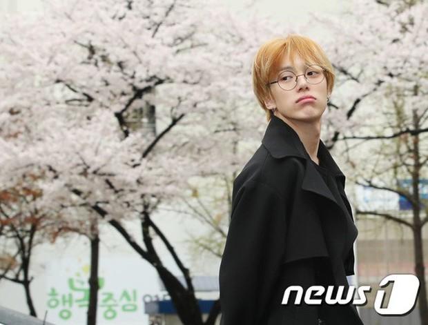 Tiên cảnh hoa anh đào tại Hàn: Mỹ nhân Hani chiếm hết spotlight, Wanna One xuất hiện cùng quân đoàn mỹ nam - Ảnh 21.