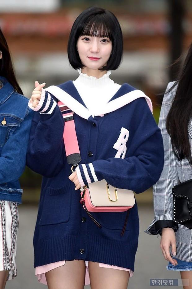 Tiên cảnh hoa anh đào tại Hàn: Mỹ nhân Hani chiếm hết spotlight, Wanna One xuất hiện cùng quân đoàn mỹ nam - Ảnh 26.