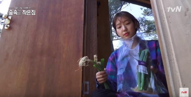 Park Shin Hye lộ cằm nọng, buồn bã bỏ bớt đồ đạc để vào... rừng sống - Ảnh 1.