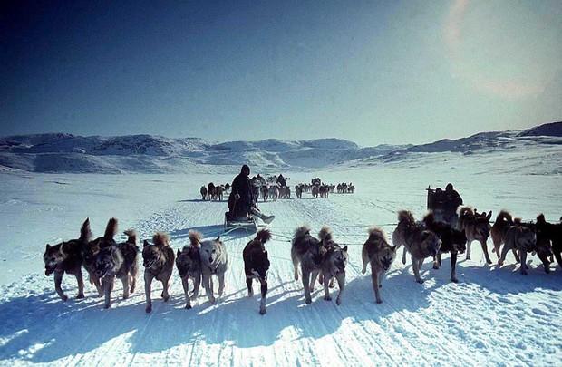 Câu chuyện về những người già bị để mặc đến chết ở Eskimo: Bị ném xuống biển, chôn sống hay bỏ rơi ngoài trời giá lạnh - Ảnh 3.