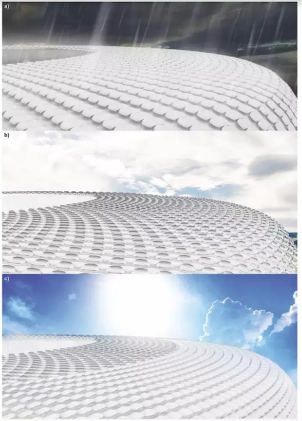 Trong tương lai, các cao ốc tối tân có thể tiết kiệm điện nhờ... quả thông - Ảnh 4.