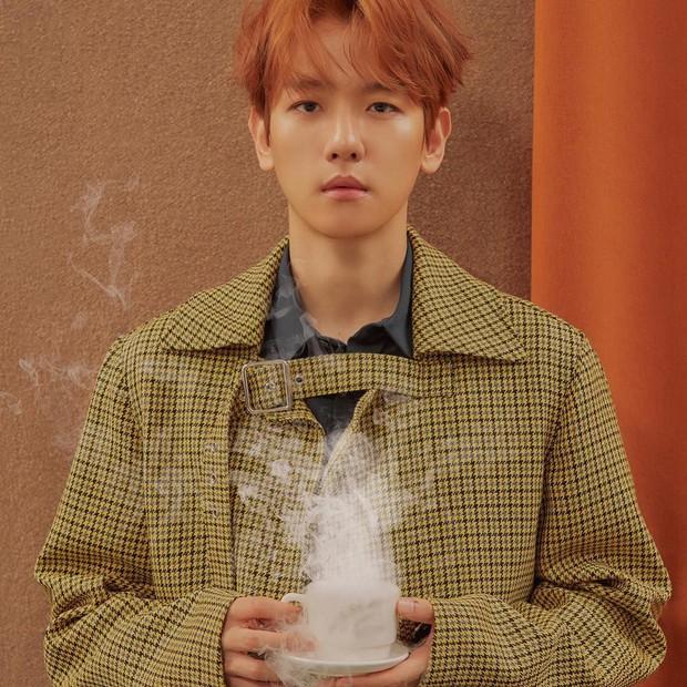 EXO thay đổi thế nào sau 5 năm tham gia show thực tế đầu tiên? - Ảnh 9.