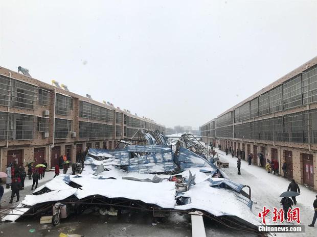 Mưa tuyết, giá lạnh tràn xuống Trung Quốc: Sinh viên cầm ô, xếp hàng lên lớp - Ảnh 3.