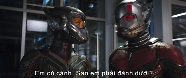 """""""Avengers: Infinity War"""" còn chưa hạ nhiệt, Marvel đã tung trailer tiếp theo cho """"Người Kiến - Ảnh 5."""