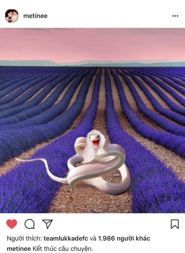Lukkade tình thương mến thương với Rita sau khi đá xéo đối thủ là rắn độc - Ảnh 1.