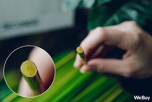 Dùng thử loại ống hút làm từ cỏ và thép không gỉ: Chất liệu thân thiện với môi trường dùng có thích bằng ống hút nhựa? - Ảnh 4.