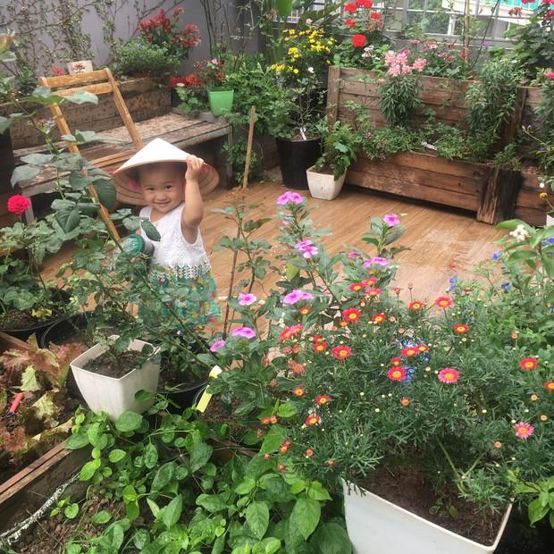 Khu vườn sân thượng trồng cho vui mà cây nào cũng thắm hoa trĩu quả của bà mẹ 8x mát tay - Ảnh 5.