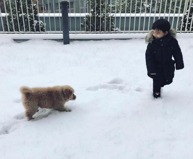 Tình bạn đẹp như mơ, đôi lúc giận hờn vu vơ của nhóc tì Hàn Quốc với chú chó cưng đốn tim dân mạng - Ảnh 6.