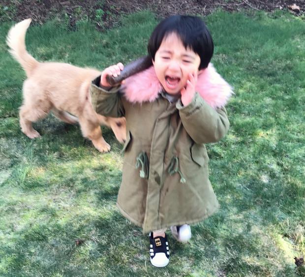 Tình bạn đẹp như mơ, đôi lúc giận hờn vu vơ của nhóc tì Hàn Quốc với chú chó cưng đốn tim dân mạng - Ảnh 3.