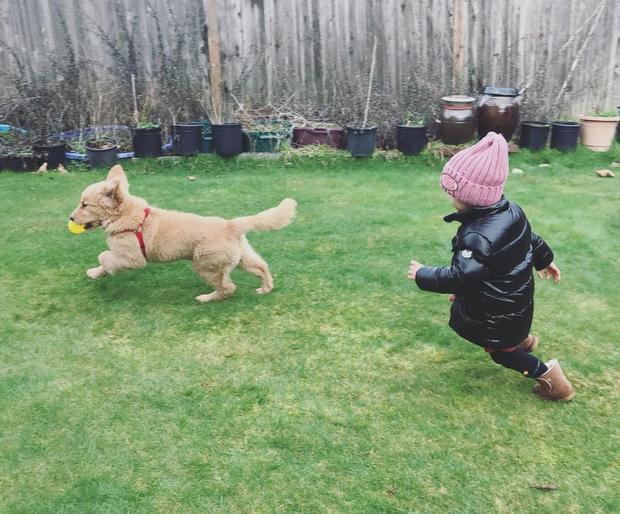Tình bạn đẹp như mơ, đôi lúc giận hờn vu vơ của nhóc tì Hàn Quốc với chú chó cưng đốn tim dân mạng - Ảnh 10.