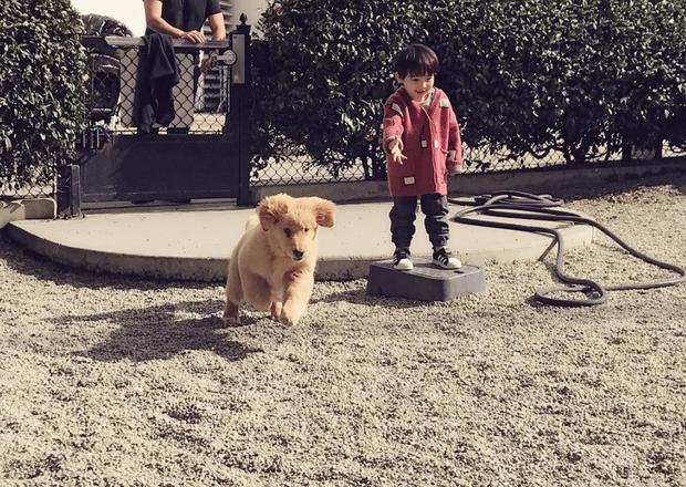 Tình bạn đẹp như mơ, đôi lúc giận hờn vu vơ của nhóc tì Hàn Quốc với chú chó cưng đốn tim dân mạng - Ảnh 11.
