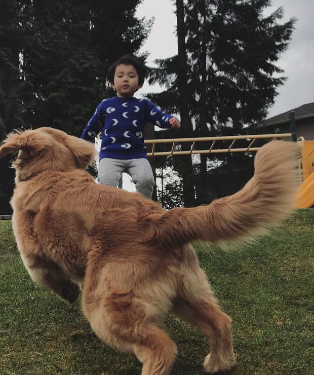 Tình bạn đẹp như mơ, đôi lúc giận hờn vu vơ của nhóc tì Hàn Quốc với chú chó cưng đốn tim dân mạng - Ảnh 13.