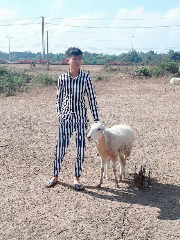 Thanh niên tạo dáng bên chú cừu đầy thần thái nhưng vẫn nhờ cư dân mạng sửa ảnh và cái kết buồn - Ảnh 3.