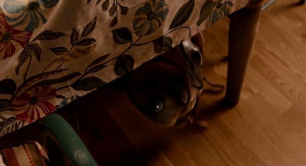 Nhiều khán giả phát hiện trailer mới nhất của Người Kiến và Chiến Binh Ong xuất hiện chi tiết lạ! - Ảnh 3.