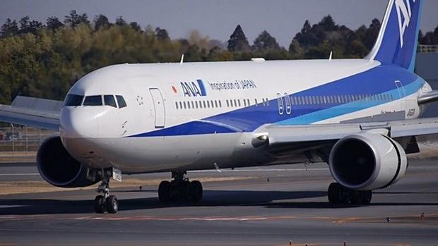 Khói trên chuyến bay Nhật Bản -Hongkong, 137 khách được sơ tán khẩn - Ảnh 1.