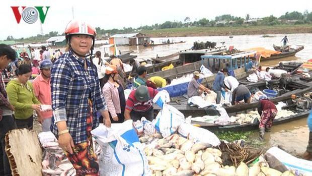 Hàng trăm tấn cá bè trên sông La Ngà chết trong đêm - Ảnh 2.