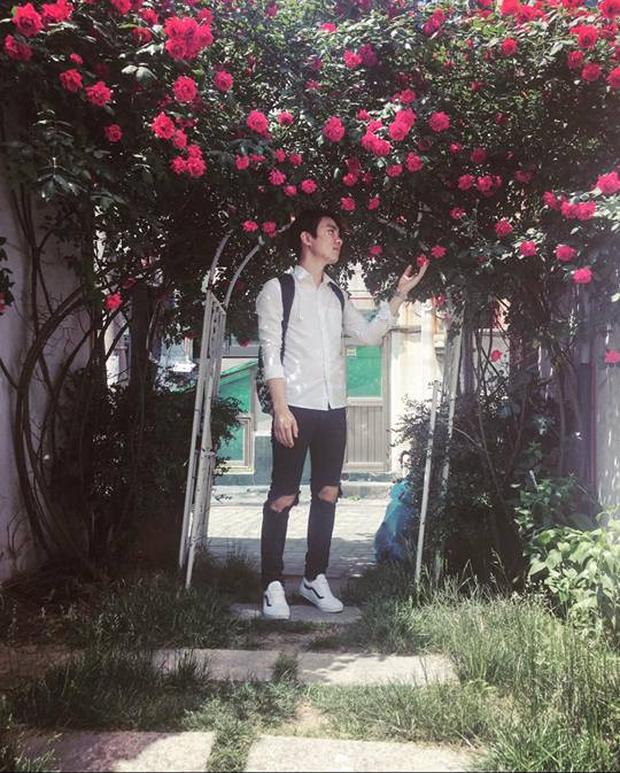 Căn nhà với cánh cổng hoa hồng đang được cư dân mạng chia sẻ mạnh vì lãng mạn không chịu nổi - Ảnh 4.