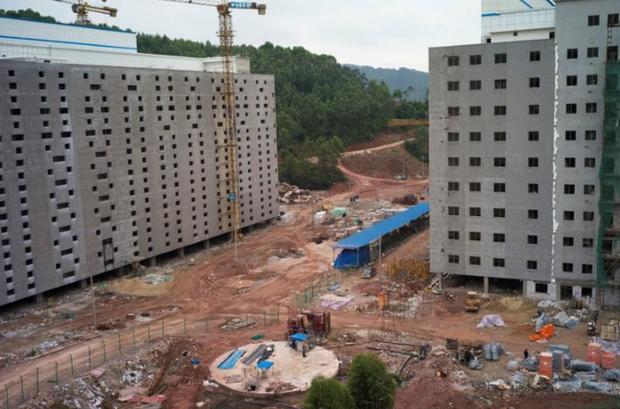 Người Trung Quốc xây hẳn khách sạn 7 tầng để... nuôi lợn - Ảnh 2.