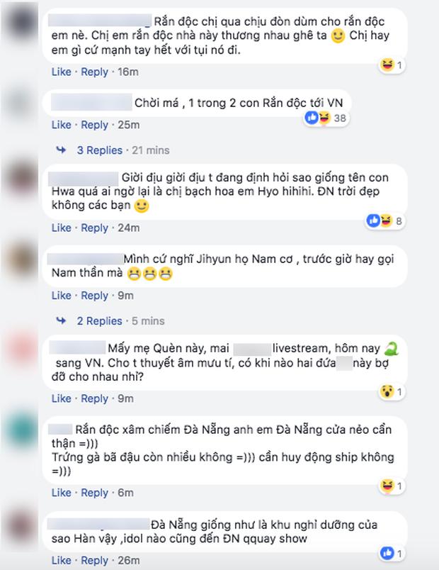 Lần đầu trong lịch sử sao Hàn đến Việt Nam bị fan đe dọa, phản đối: Chắc chỉ có rắn độc Hyoyoung là duy nhất! - Ảnh 6.