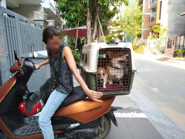 Người phụ nữ thuê chuyên gia chăm sóc chó 450k/ngày, 3 ngày sau đến đón thì thú cưng đã qua đời và nằm trong tủ lạnh - Ảnh 1.