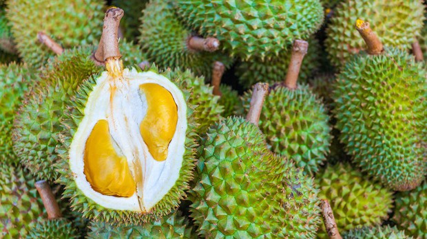 Ra chợ mua sầu riêng, nhớ đừng bỏ qua những đặc điểm này để mua được quả sầu riêng ngon - Ảnh 5.