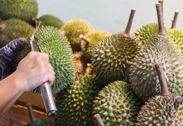 Ra chợ mua sầu riêng, nhớ đừng bỏ qua những đặc điểm này để mua được quả sầu riêng ngon - Ảnh 3.