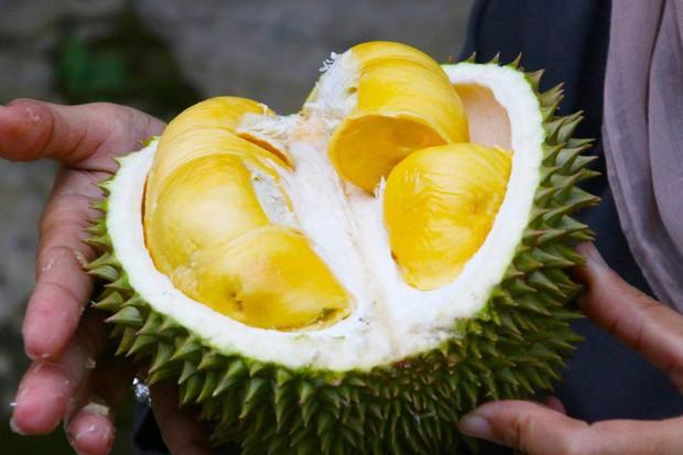 Ra chợ mua sầu riêng, nhớ đừng bỏ qua những đặc điểm này để mua được quả sầu riêng ngon - Ảnh 1.