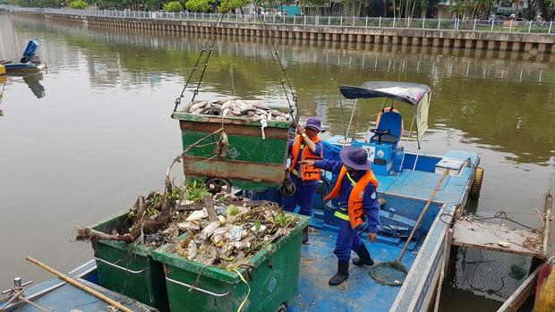 Cá lại chết hàng loạt trên kênh Nhiêu Lộc - Thị Nghè ở Sài Gòn - Ảnh 3.