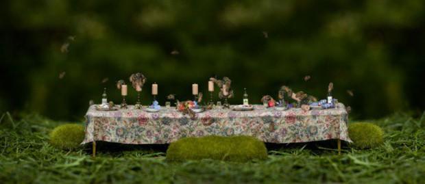 Khi muông thú mở tiệc linh đình: rắn thập thò, con lười đu bám dưới gầm bàn và giấc mơ thời bé của nữ nhiếp ảnh gia - Ảnh 17.