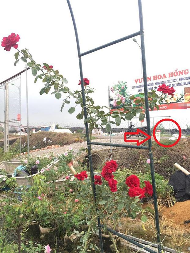 Clip: Để hoa ở cổng chưa kịp giao cho khách 5 phút sau đã bị người phụ nữ đi ô tô qua cầm giùm - Ảnh 2.