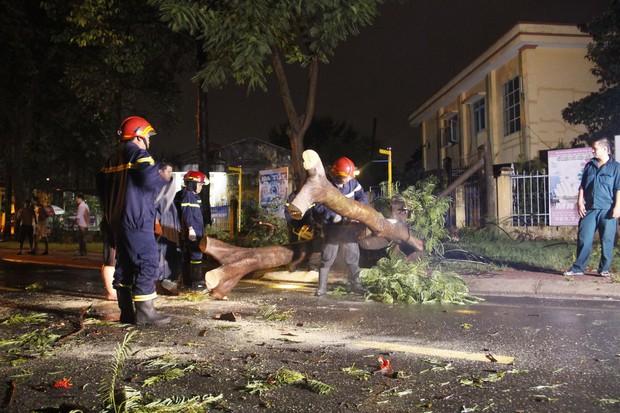 Mưa lớn kèm gió lốc khiến cây cổ thụ ngã đổ kéo gãy cột điện, hàng trăm người dân Sài Gòn sống trong bóng tối - Ảnh 3.
