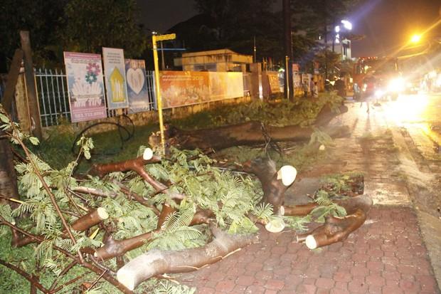 Mưa lớn kèm gió lốc khiến cây cổ thụ ngã đổ kéo gãy cột điện, hàng trăm người dân Sài Gòn sống trong bóng tối - Ảnh 2.